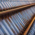 Sunlight On Rails by Chris Paddick