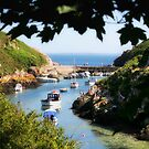 Porthclais Harbour Pembs by Anthony Thomas