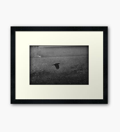 It came for me on wings Framed Print