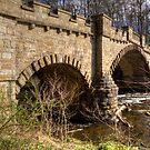 Almondell Bridge by Tom Gomez