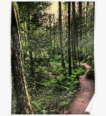 lewis and clark trail Poster