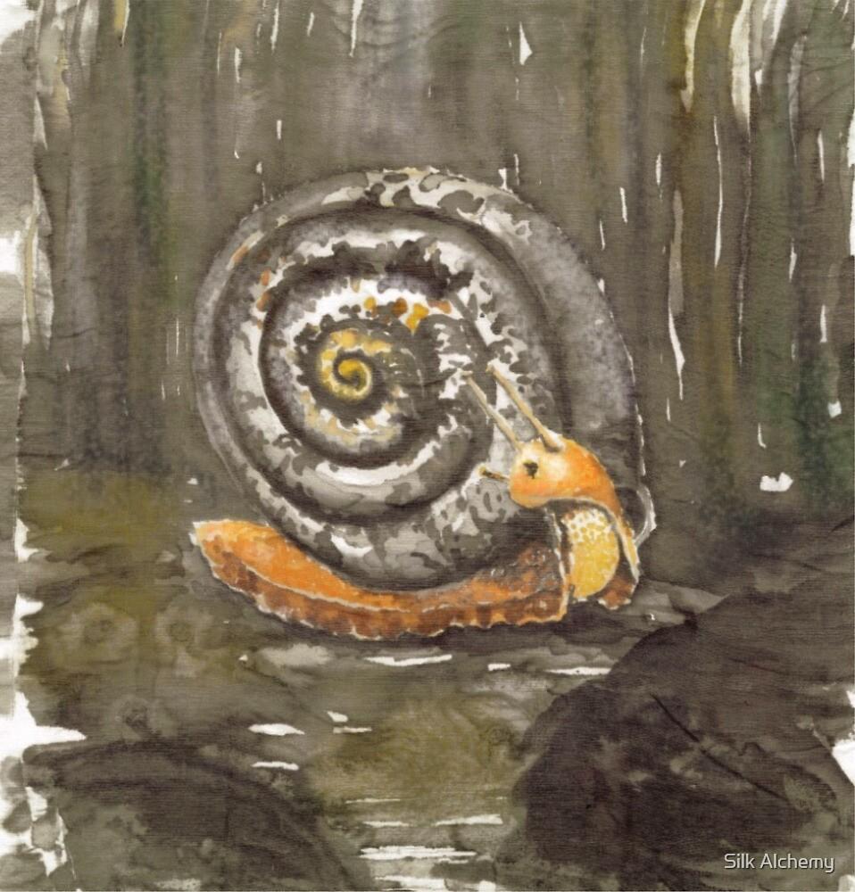 Fibonacci's snail  by Silk Alchemy