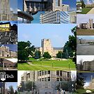 Virginia Tech 2 by sky2007