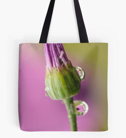 Fragile ~ Tote Bag