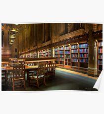 Bookshelves in the Library Poster