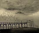 Mount Tahoma in Washington State... by Jeff Burgess