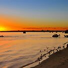 Bribie Island & The Glasshouse Mountains. Queensland, Australia. (3) by Ralph de Zilva