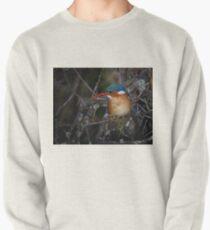 Malachite Kingfisher Pullover