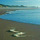 Boren's Seascape by Nick Boren