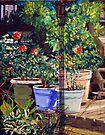 Colorful Pots by Jim Phillips