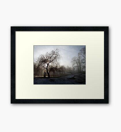 Figure in the Mist Framed Print
