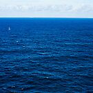 Sailboat, Two Whales Breaching, A Distant Oil Tanker and The Deep Blue Sea by Raoul Isidro