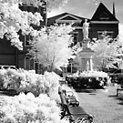 Courthouse McMinnville Tennessee by © Joe  Beasley IPA