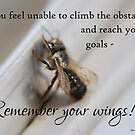 Remember your wings! by Rowan  Lewgalon