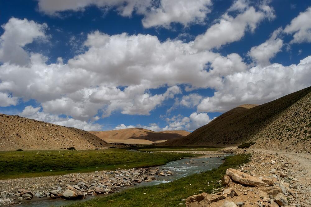 Ladakh Landscapes by CoSurvivor