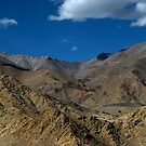Golden Landscapes - Ladakh by CoSurvivor