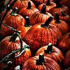 Pumpkin Patch Pickin... by Poete100
