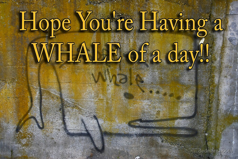 whale of a day by dedmanshootn