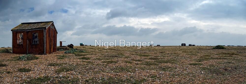 Tin Shack by Nigel Bangert