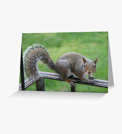 What are you lookin' at me for? Greeting Card