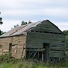 Shed From a Far Gone Era by DEB CAMERON