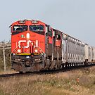 Freight Train On the Prairie by Steve Boyko