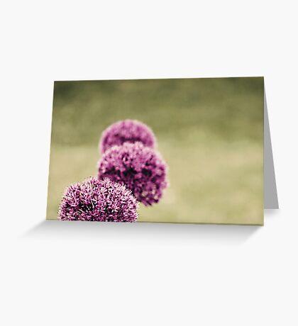 Garden View Greeting Card