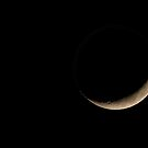 Waxing Moon by Modified