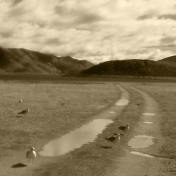 The Road Less Traveled goes Under the Lake by Shutterbug-csg