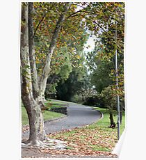 Autumn at Coburg Lake Poster