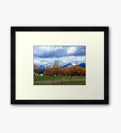May Day on the Farm Framed Print