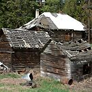 Old Homestead by Valerie Henry