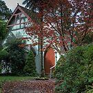 St George's Anglican Church, Mt Wilson, NSW, Australia by Adrian Paul