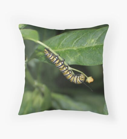 Munching to Beauty Throw Pillow