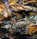 Rock abstract by Photos - Pauline Wherrell