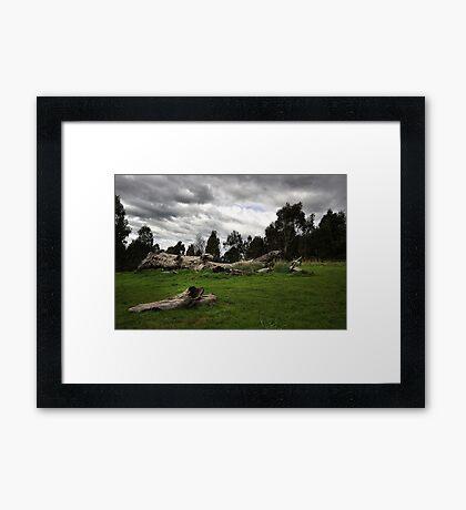 Natural Landscape - Melbourne Framed Print