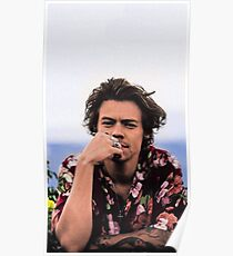 Harry Relax Poster