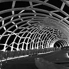 Webb Bridge by Karina Walther