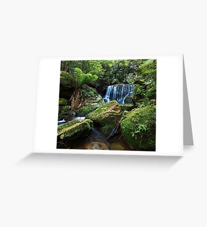 Moss on the Rock - Lurinda Falls  Greeting Card