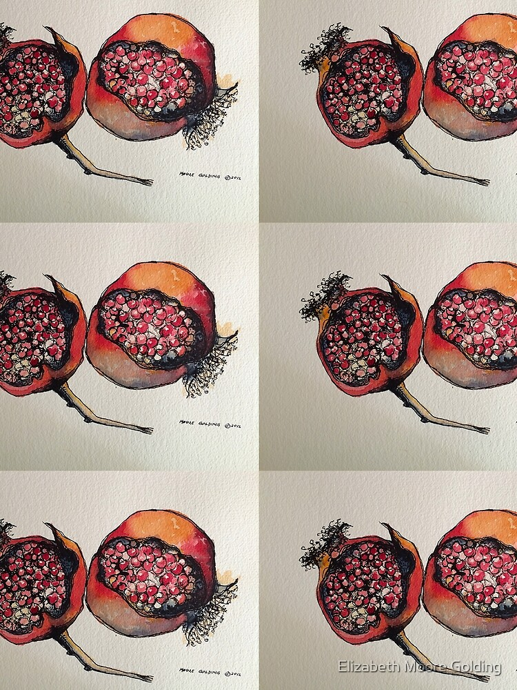 Pomegranate. Pen and wash. by emgolding