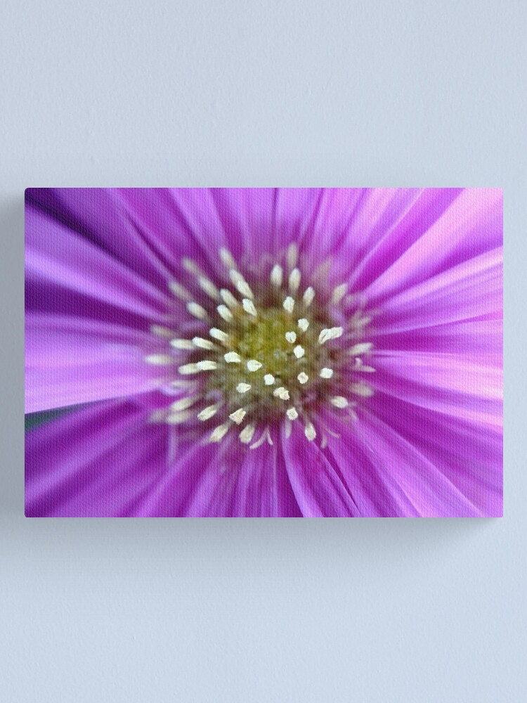 Alternate view of Purple Sun Canvas Print