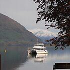 Lake Wanaka, South Island, New Zealand by outbackwriter
