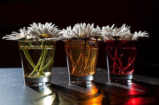 Coloured glass by Karen Havenaar