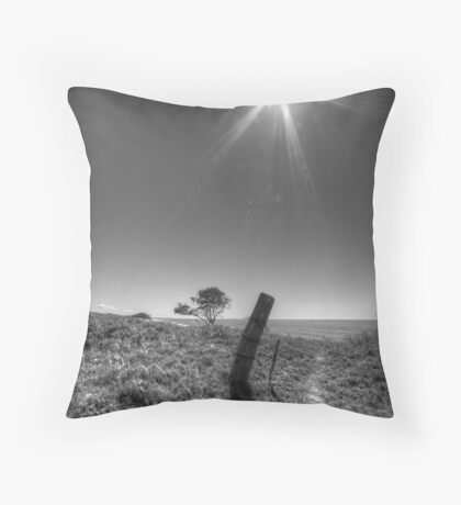 Leaning Post Throw Pillow