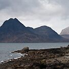 The Cuillins by Cocktus
