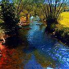 Vibrant river in autumn season by Patrick Jobst