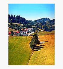 A village, some trees, and more boring scenery Photographic Print
