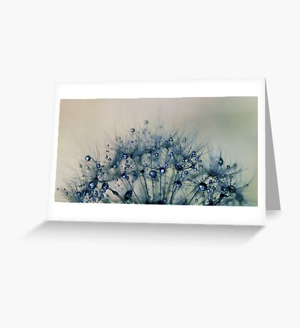 delicate wishes of hope Greeting Card