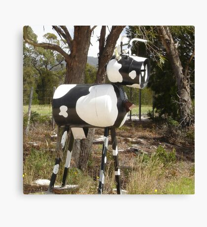 Cow Mail Canvas Print