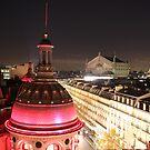 Rooftops of Paris by Elena Skvortsova